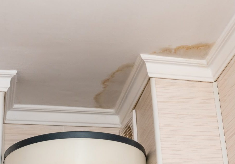 water leak, water-damaged ceiling, close-up of a stain on the ceiling